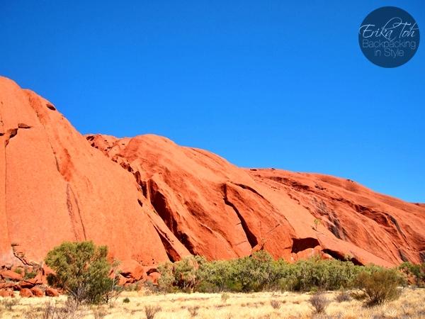 Aboriginal Run Uluru Tours