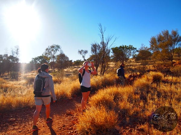 ErikaToh-Backpacking-In-Style-Kata-Tjuta-Karingana-Lookout-Valley-of-the-Winds-Walk-18