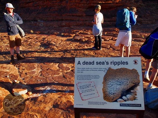 ErikaTohTravels-Backpacking-In-Style-The-Dead-Sea-Ripples-Kings-Canyon-Rim-Walk-Red-Centre-Australia-1