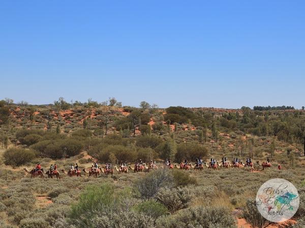 ErikaEvaTohTravels-Uluru-Camel-Ride-Camel-Express-1-Ayers-Rock-Australia-16
