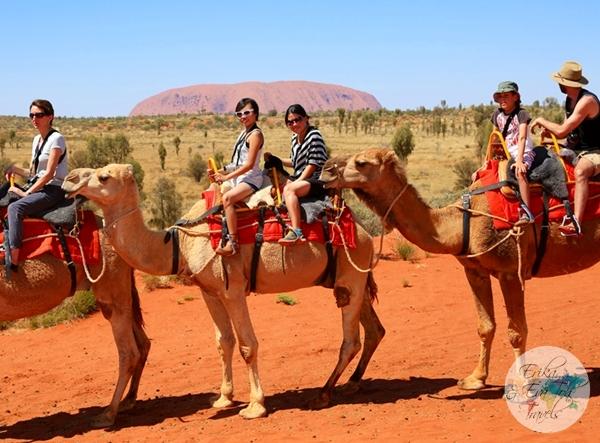 ErikaEvaTohTravels-Uluru-Camel-Ride-Camel-Express-1-Ayers-Rock-Australia-19