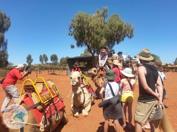 ErikaEvaTohTravels-Uluru-Camel-Ride-Camel-Express-1-Ayers-Rock-Australia-8