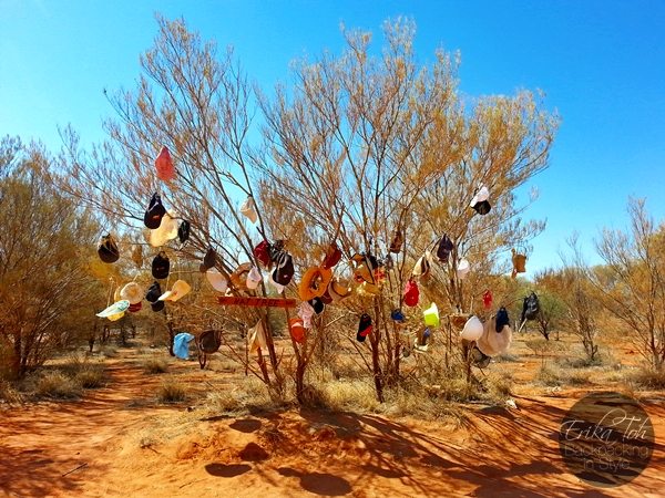 ErikaTohTravels-Backpacking-In-Style-Hat-Tree-Red-Centre-Way-Australia