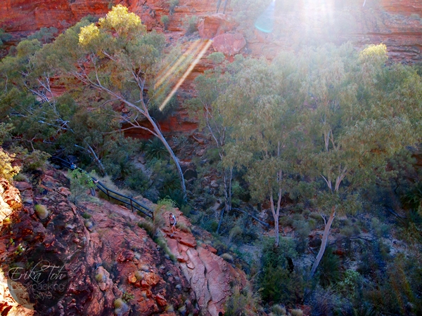 ErikaTohTravels-Backpacking-In-Style-The-Garden-of-Eden-Kings-Canyon-Rim-Walk-Red-Centre-Australia-10