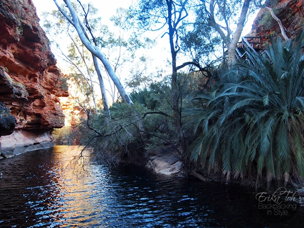 ErikaTohTravels-Backpacking-In-Style-The-Garden-of-Eden-Kings-Canyon-Rim-Walk-Red-Centre-Australia-25