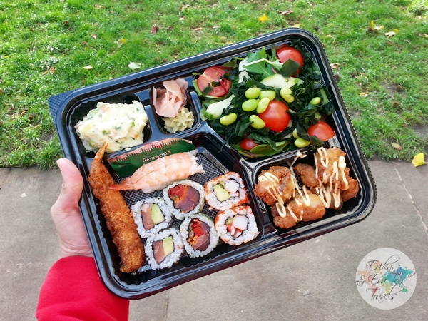 ErikaEvaTohTravels-Sushi-Picnic-at-St-Pauls-Cathedral-in-London-UK